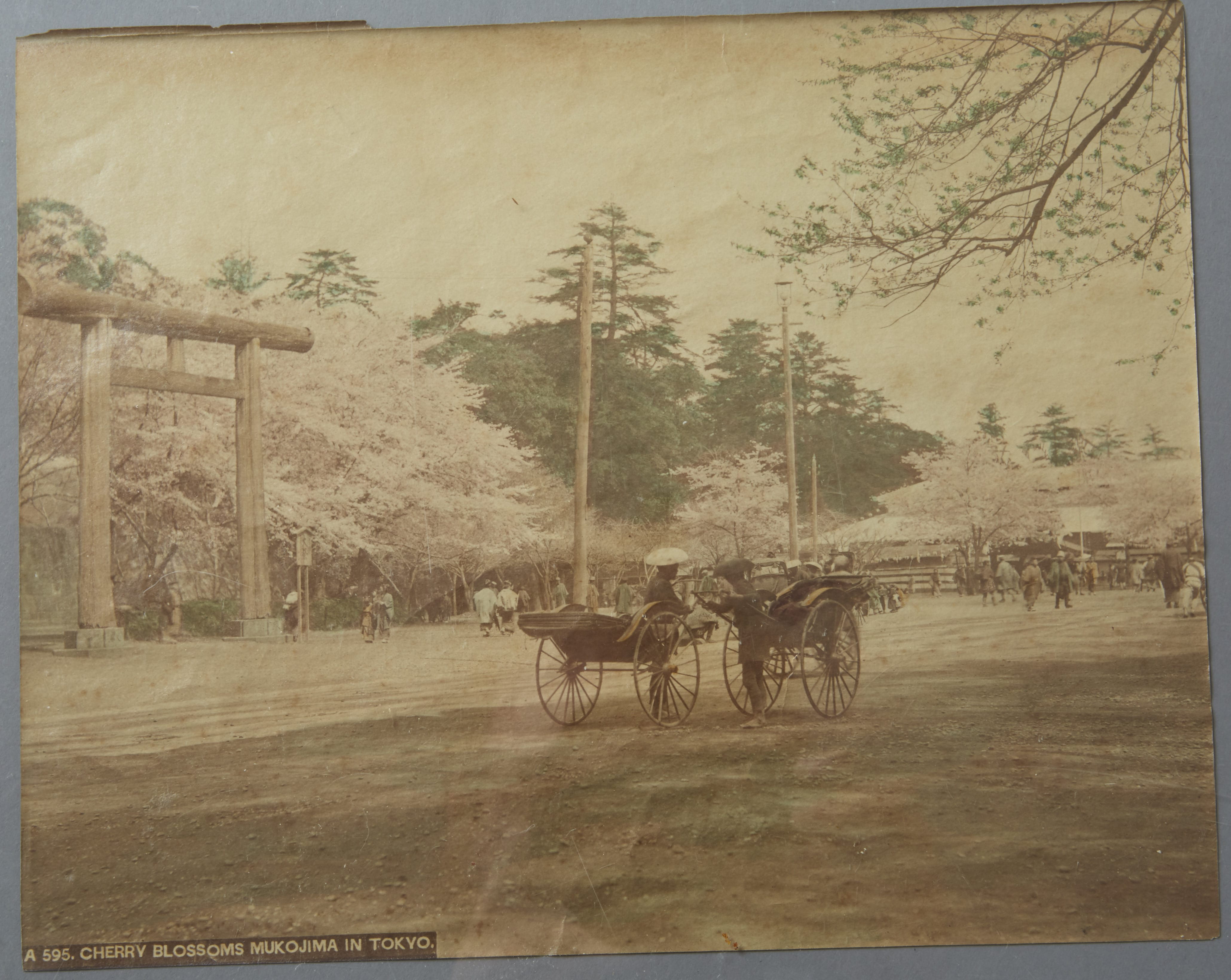 Lot 248: 6 pc: 19th century Japanese Albumen Photograph Prints of Japan possibly by Kozaburo Tamamura